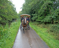 A fun and scenic, if somewhat damp, ride through Killarney National Park in horse drawn carriages.
