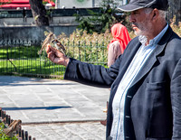 A man handfeeding birds in the plaza in front of Notre Dame Cathedral, fun to watch!