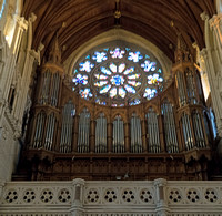 The organ in St Colman's Cathedral was built by Telford and Telford and installed in 1905; it is one of only a few Telford and Telford organs in original condition.